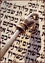 torah_with_pointer.jpg