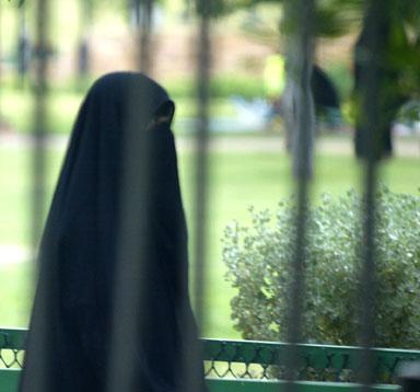 http://shalomrav.files.wordpress.com/2007/11/_23109_saudi-woman.jpg