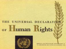 pillar7-society-universal-declaration-of-human-rights.jpg